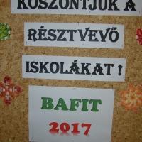 BAFIT (2)